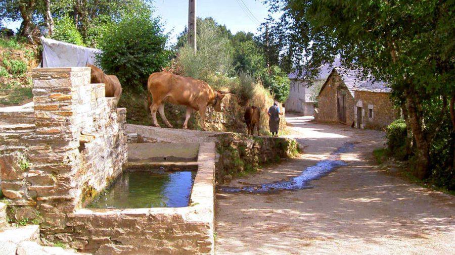 La Laguna de Castilla, León - Camino Francés (Etapa de Villafranca del Bierzo a O Cebreiro) :: Guía del Camino de Santiago