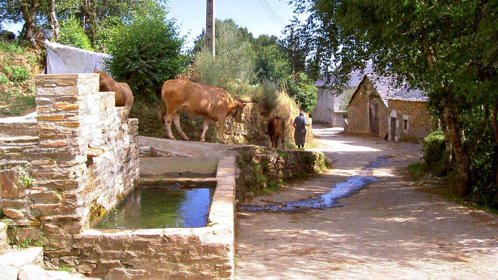 La Laguna de Castilla, León (Etapa Villafranca del Bierzo - O Cebreiro) :: Guía del Camino de Santiago