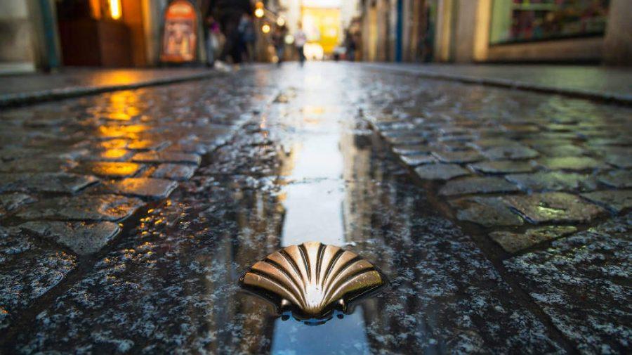 La concha de vieira, símbolo y marca del Camino de Santiago
