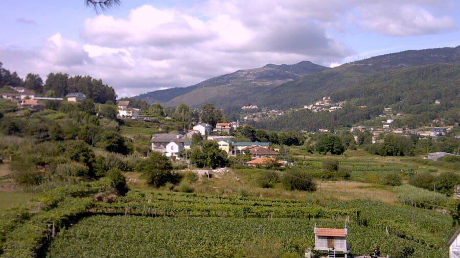 Paisaje de Mos, Pontevedra - Camino Porgugués :: Albergues del Camino de Santiago