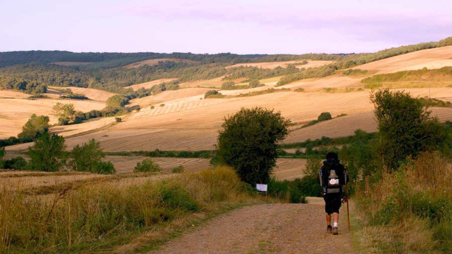 Técnicas para caminar en el Camino de Santiago :: Albergues del Camino de Santiago