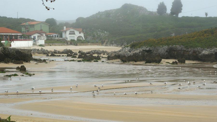 Playa de las Cámaras, Celorio (Llanes - Asturias) - Camino del Norte :: Albergues del Camino de Santiago