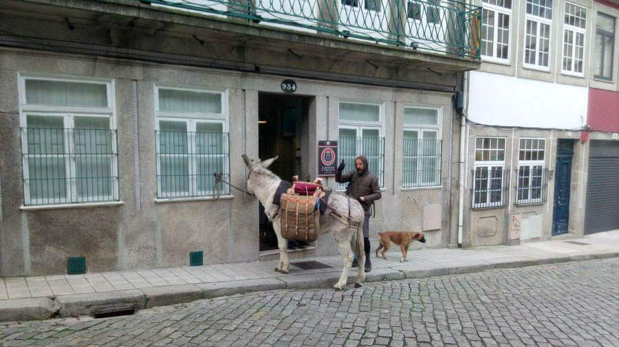 Albergue de Peregrinos do Porto, Oporto, Portugal - Camino Portugués por la Costa :: Albergues del Camino de Santiago