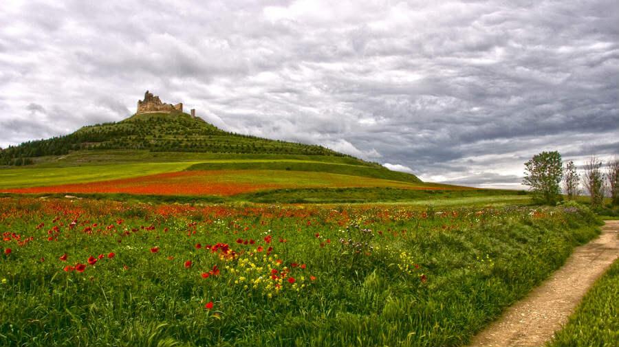 Castillo de Castrojeriz, Burgos, Camino Francés :: Guía del Camino de Santiago