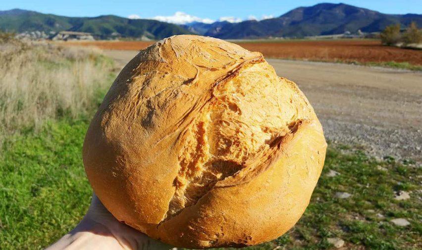 Pan de leña artesano de Santa Cilia de Jaca - Camino Aragonés :: Guía del Camino de Santiago