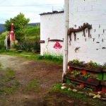 Albergue Casa Xica, A Trapa (Trabada), Lugo - Camino del Norte :: Albergues del Camino de Santiago